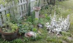 My best friend's garden