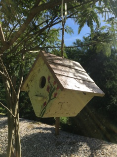Dirty and battered, I rehang the hosue, hopeful the wrens will return and not be too put off.